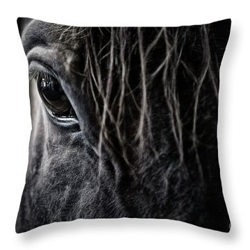 A Race Horse Named Tikki Throw Pillow