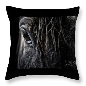 A Race Horse Named Tikki Throw Pillow