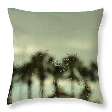 A Rainy Day Throw Pillow by Christopher L Thomley
