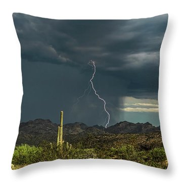 Throw Pillow featuring the photograph A Rainy Sonoran Day  by Saija Lehtonen