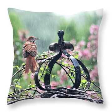 A Rainy Summer Day Throw Pillow