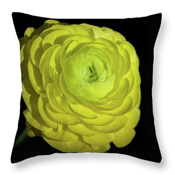 A Ray Of Light Throw Pillow