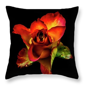 A Red Rose On Black Throw Pillow