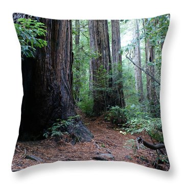 A Redwood Trail Throw Pillow by Ben Upham III
