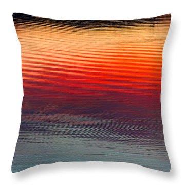 A Resplendent Reflection Throw Pillow by Jan Davies