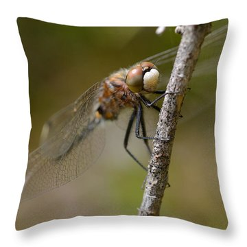A Rest Throw Pillow