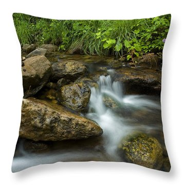 A Restful Spot Throw Pillow by Sue Cullumber