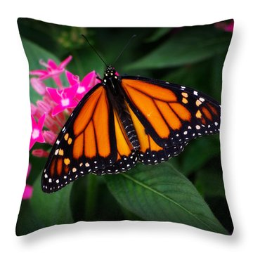 A Resting Place Throw Pillow by Linda Mishler