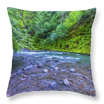 Throw Pillow featuring the photograph A River by Jonny D