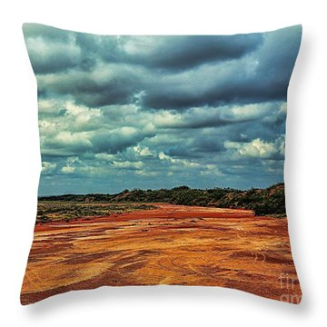 Throw Pillow featuring the photograph A River Of Red Sand by Diana Mary Sharpton