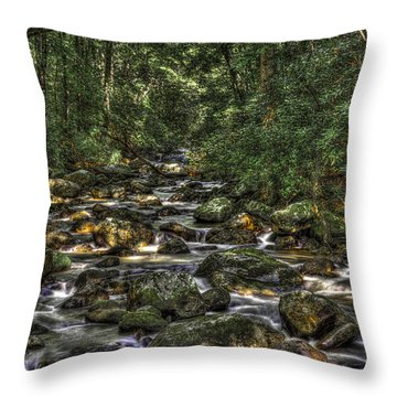 A River Through The Woods Throw Pillow