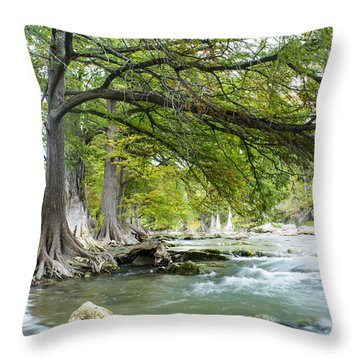 A River Under Bald Cypress Trees Throw Pillow