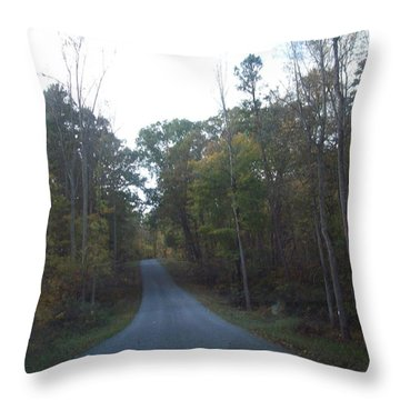 A Road Home Throw Pillow by Robin Coaker