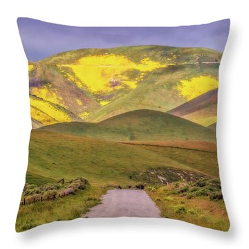Throw Pillow featuring the photograph A Road Less Traveled by Marc Crumpler