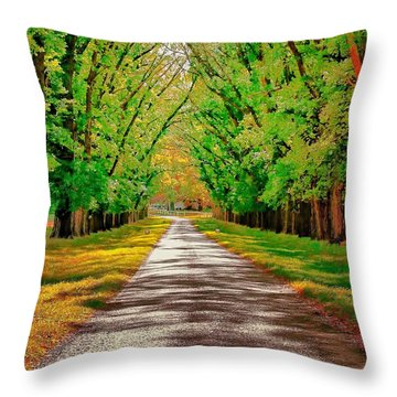 A Road Through Autumn Throw Pillow by Wallaroo Images
