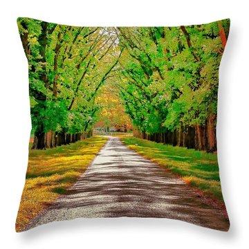 A Road Through Autumn Throw Pillow