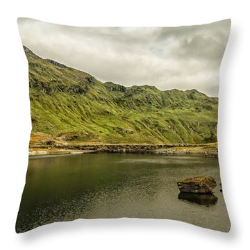 A Rock And A Hard Place Throw Pillow