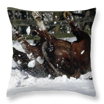 A Roll In The Snow Throw Pillow