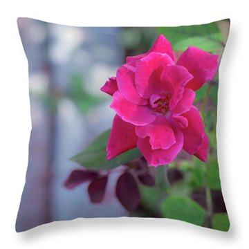 A Rose And A Hard Place Throw Pillow