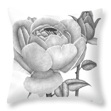 A Rose Bloom Throw Pillow by Patricia Hiltz