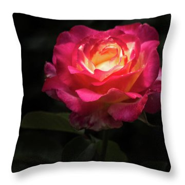 Throw Pillow featuring the photograph A Rose For Love by Ed Clark