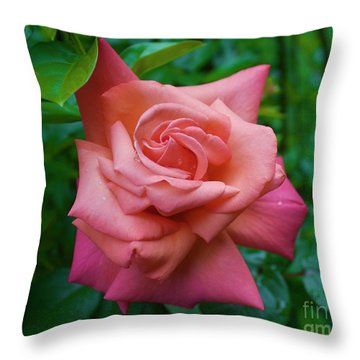 A Rose In Spring Throw Pillow
