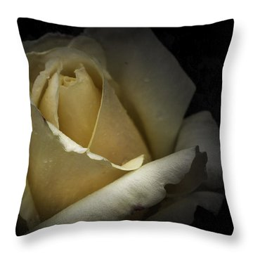 Throw Pillow featuring the photograph A Rose by Ryan Photography