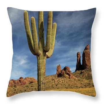 Throw Pillow featuring the photograph A Saguaro In Spring by James Eddy