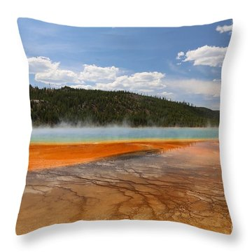 Throw Pillow featuring the photograph A Sea Of Jasper by Robert Pearson