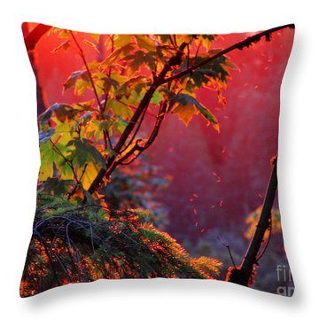 A Season's  Sunset Dusting Throw Pillow