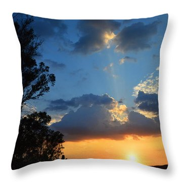 Throw Pillow featuring the photograph A Serene Moment by Glenn McCarthy Art and Photography