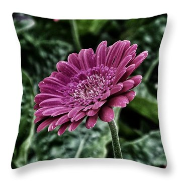 A Shade Of Purple Throw Pillow