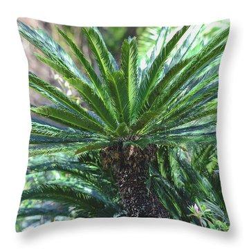A Shady Palm Tree Throw Pillow