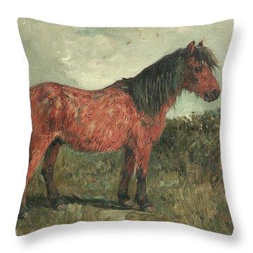 A Shetland Pony Throw Pillow