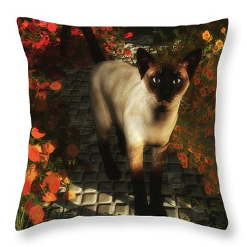 A Siamese Cat Is Looking  Throw Pillow