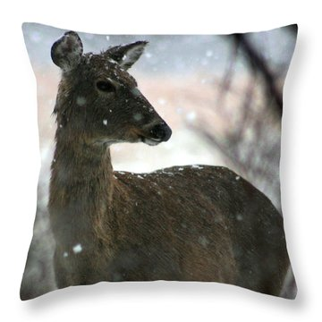 Throw Pillow featuring the photograph A Sideways Look by David Dunham