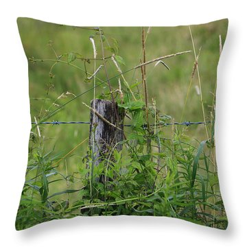 A Simple Post Throw Pillow