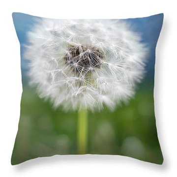 A Single Dandelion Seed Pod Throw Pillow