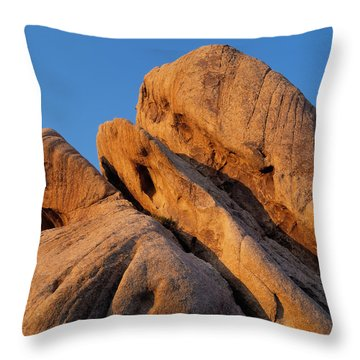 A Slanted View Throw Pillow