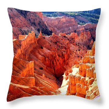 A Slice Of Brice Throw Pillow