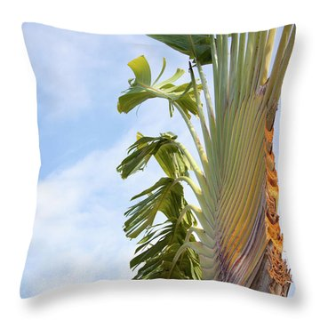 A Slice Of Nature Throw Pillow