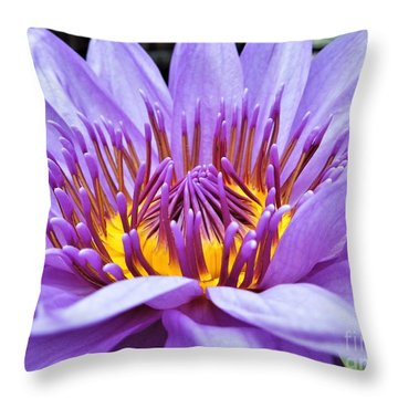 A Sliken Purple Water Lily Throw Pillow