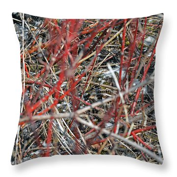 A Small Open Window To Show You My Camouflage Throw Pillow