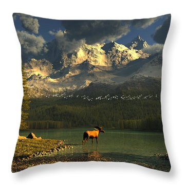 A Small Planet Throw Pillow