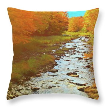 A Small Stream Bright Fall Color. Throw Pillow