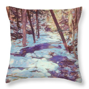 A Small Stream Meandering Through Winter Landscape. Throw Pillow