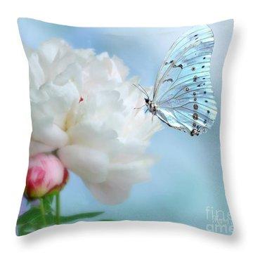 A Soft Landing Throw Pillow