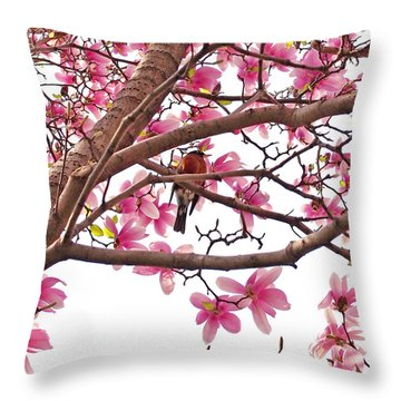 A Songbird In The Magnolia Tree Throw Pillow