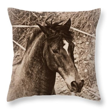 A Spanish Noble Throw Pillow