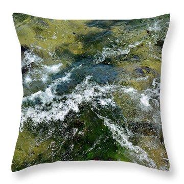 A Sparkling Ocean Palette Throw Pillow